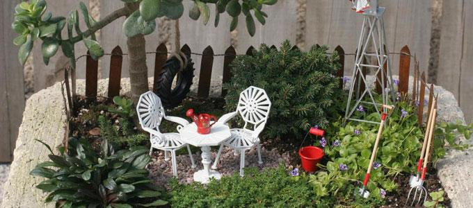 Image result for creating mini gardens