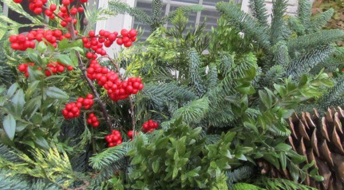Keep that greenery fresh this holiday season